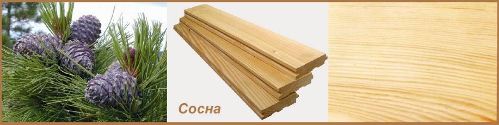 Пиломатериалы из мягкой древесины сосны