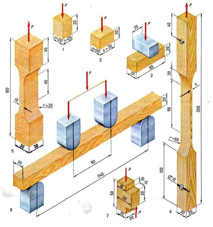 Прочность древесины: виды испытаний и формулы